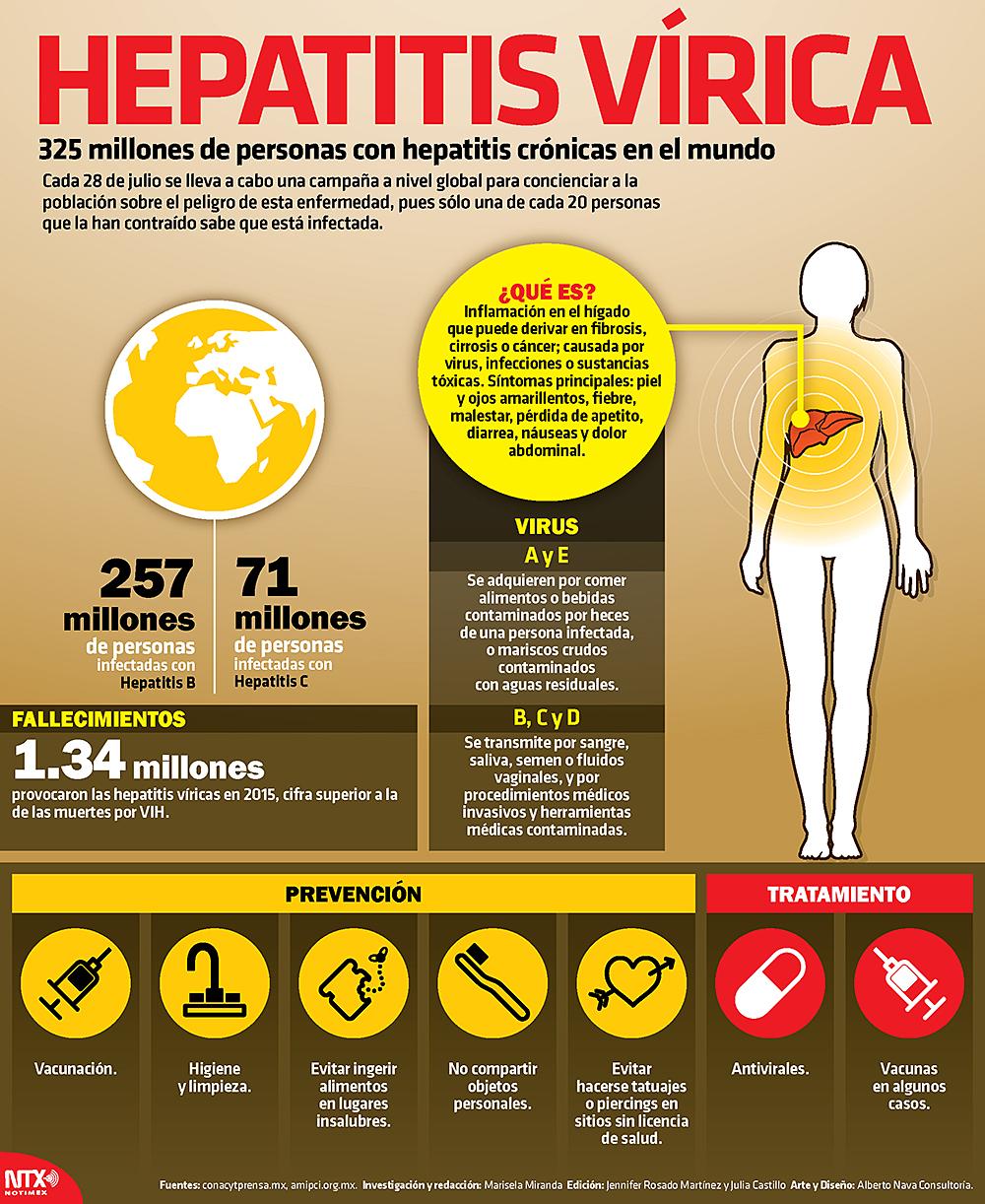 Hígado, órgano del cuerpo más afectado por la hepatitis   El ...